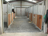 Stable Comfort photo 2